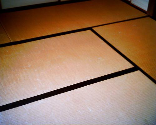 【写真】VQ1005で撮影した小出邸の畳