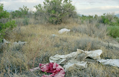 possessions (drl.) Tags: red utah desert greatsaltlake possessions gsl rescan purged purge132 purgeprotected youtricksterpanayotisyoudonothaveaprotectthisweek whenwillihaveoneagain thatisagoodquestion andtheanswerwhenyougrowup