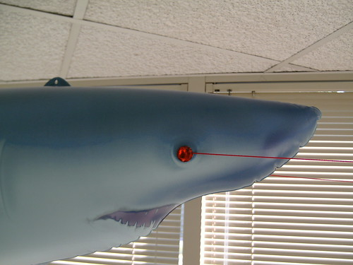 Emergent Product-Management Shark (Analog Lasers close-up)