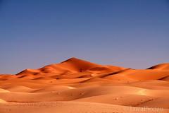 Erg (LucaPicciau) Tags: africa sahara sand shadows dunes ombra ombre arena morocco shade maroc marocco duna deserto sabbia erg africano merzouga rissani lupi deserti chebbi  desertscape cammelli picciau lucapicciau