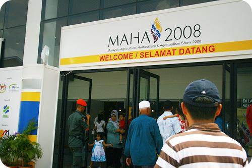 MAHA 2008