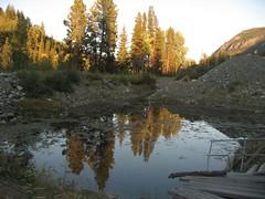 Gilded pine reflections (peggyhr) Tags: sky sunlight canada mountains pool reflections pond rocks bc bushes settingsun tulameen peggyhr