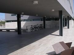 Bicicletas estacionadas junto à biblioteca da FCT