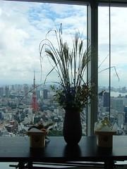 東京タワーとススキ