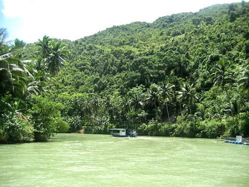 The Majestic Loboc River