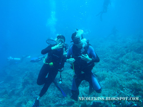 diving in bunaken