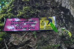 Do Not Litter (tropicbronzed) Tags: bali nature homestay batukaru sacredmountain offthebeatentrackbali