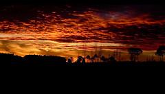 ATARDECE EN MI BARRIO 2 (jmavedillo - NTF) Tags: madrid noche rojo cielo ba javier martinez naranja barrio tarde larga aravaca avedillo nubesexposicion