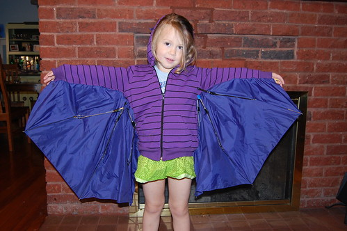 full wingspan