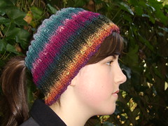 Noro Headband Neckwarmer head shot