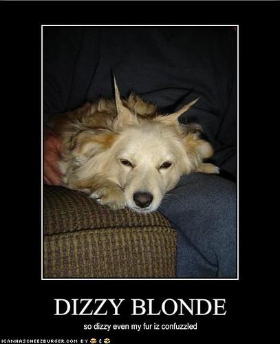 Dizzy Blonde