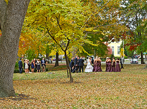 Lafayette Square Neighborhood, in Saint Louis, Missouri, USA - Lafayette Park - wedding