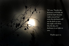 Darkness is as Light to You (honey 77) Tags: light sun tree nature silhouette night day shine darkness god jesus lord christian inspirational scriptures bibleverse psalm1391112