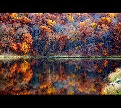 Autumnal Reflections (Matthew Gilliam Photography) Tags: favemegroup5 vanagram lesamisdupetitprince micarttttworldphotographyawards micartttt