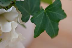 0903 bouquets #8