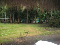 Oasis (lil'latvian) Tags: panama santacatalina oasissurfcamp