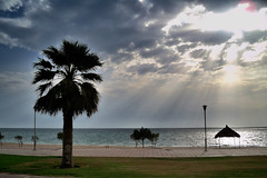 Beautiful and Natural (Naveed Mughal) Tags: morning friends pakistan sea sky sun bus travelling nature colors beautiful beauty true rain silhouette loving thanks clouds for nokia fantastic sand friend alone brother awesome great memories smiles saturday happiness giving after forever rays kuwait caring khan lovely friday thursday pura lahore imran allah mughal farwaniya lahori sialkot naveed neika subhan mangaf goodafternoon zeeimran420 jugnoo creativezee sialkoti pakistanies 6220c1 darogawala 31102009