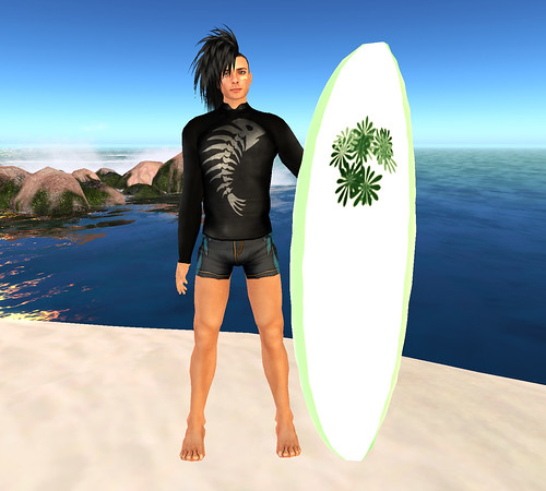 Surferguy 1