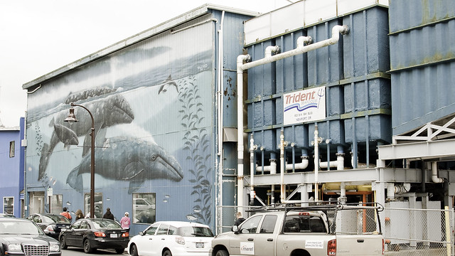 Wyland wall in Newport, OR