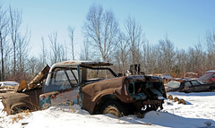 McLean's_0024 (janetliz) Tags: old winter cars rusty scrapyard tpmg mcleans