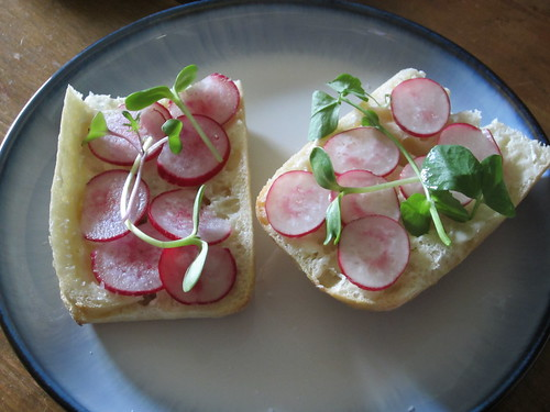 radishes with microgreens