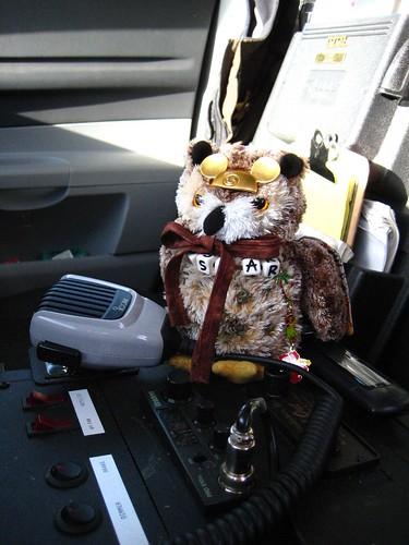 Oscar patrols Clatsop County
