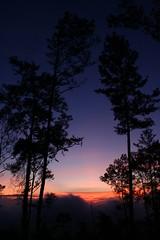 IMG_1866 (Juan Job) Tags: republica trees cloud sun tree green luz sol june pine clouds sunrise canon wow xt nice juan c nubes dominicana ligth caribbean 2008 job junio nube sn jarabacoa caribe iir jjir arabacoa wowninc lgth
