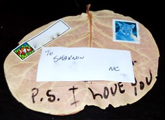 My father mailed me a leaf.