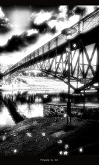Enduring Autumn (`Gink) Tags: bridge autumn light blackandwhite bw cloud reflection art leaves canon river paintshop explore fallingleaves 5d soe hdr torrens endure artisticexpression supershot gink abigfave platinumphoto anawesomeshot impressedbeauty diamondclassphotographer theunforgettablepictures goldstaraward damniwishidtakenthat enduringautumn