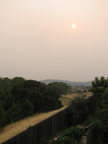Smoky sky at 7 pm