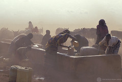 A group of people gather water from a trough (World Bank Photo Collection) Tags: poverty africa people dusty water animals bucket kenya well cans agriculture dust carry worldbank filling trough fill gather