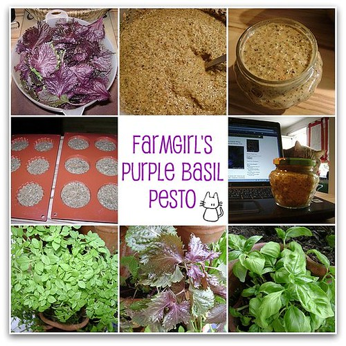 Farmgirl's Purple Basil Pesto