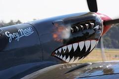 Supermarine Spitfire Mk 8