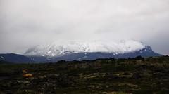 myvatn (Tania & Artur) Tags: travel iceland myvatn
