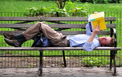 Reading on a bench