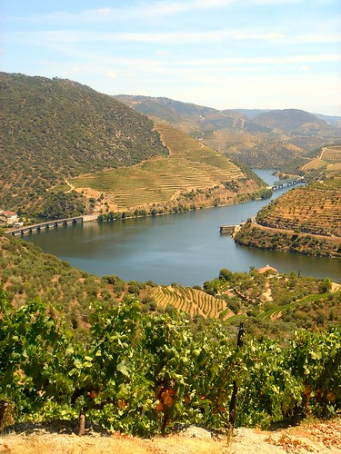 Douro River by you.
