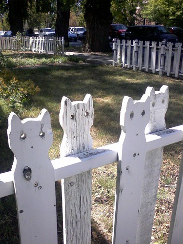 Cat Fence
