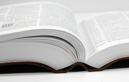Geneva Bible Facsimile - Spine
