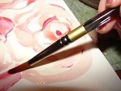 paintbrush roses
