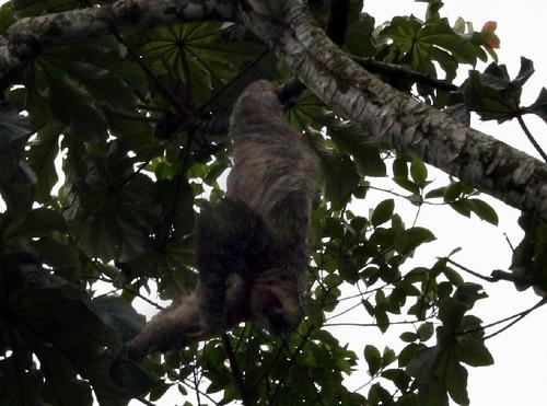 Foto tomada en Costa Rica