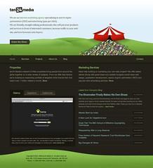 search engine optimization seo services