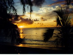"113: St. Lucian Sunset (archers30 - ""thanks for all the fish"") Tags: world sunset sea beach bronze silver gold flickr bestof dragonfly spirit grand best trophy sas 1001nights soe stlucia breathtaking globalvillage bestofthebest blueribbon filmscan trekker classique potofgold 1000words blueribbonwinner wonderfulworld topshots flickrsbest worldnature amazingphoto kartpostal photographyrocks goldenmix abigfave diamondheart anawesomeshot aplusphoto ultimateshot lunarvillage citrit theunforgettablepictures thefinalcrown flickrsun platinumheartaward excapture betterthangood astoundingimage goldstaraward dragongoldaward skiescloudsandsun thirdlife arealgem worldtrekker multimegashot allkindsofbeauty crayolacreation rubyphotographer stunningplanetearth breathtakinggold treesdie breathtakinggoldaward oletusfotos beachesaroundtheworld soniaspictures goldenart natureisall dragondaggerphoto artofimages archers30 mygearandmepremium mygearandmebronze mygearandmediamond"
