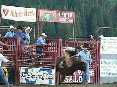 rodeo WY.jpg