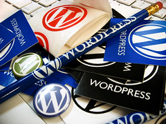 Wordpress Schawg