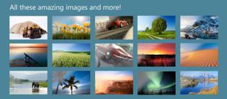 Wallpapers from MSN