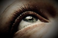 behold_MG_9597-24 (k.a. gilbert) Tags: iris macro eye closeup prime kristen wife eyelash milf manualfocus pupil crissy 50mmf14 lightroom extensiontube nikkors50mmf14