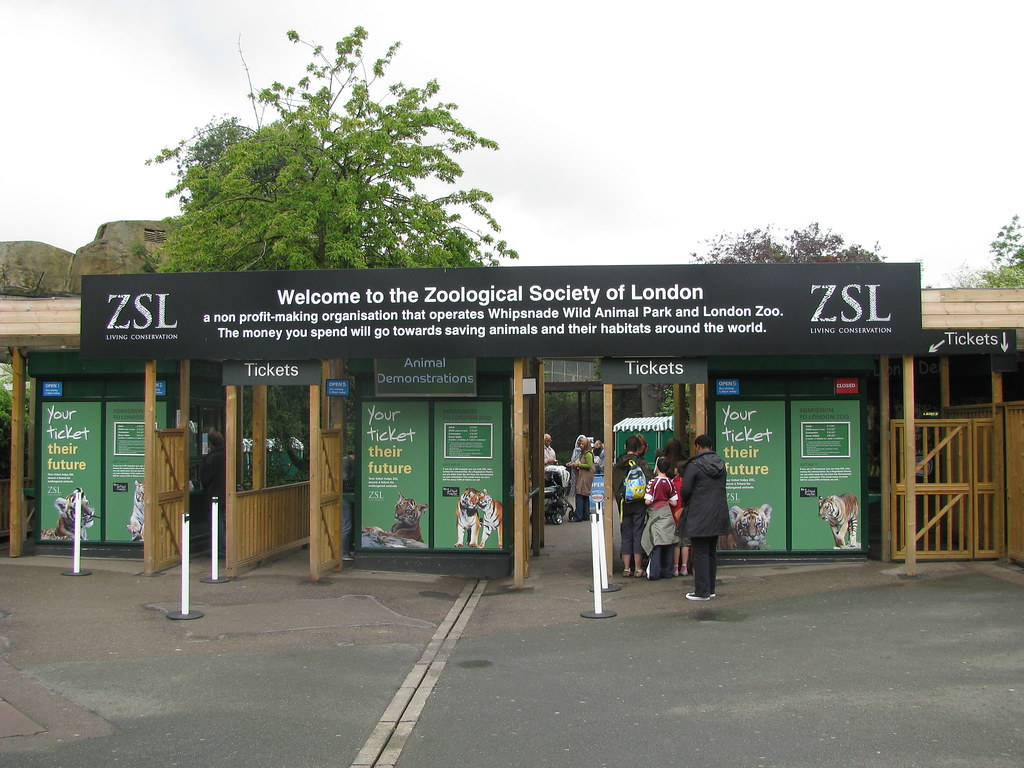 london zoo Top london zoo facts that you may not know august 2, 2017 10:00 am learn more about one of our favourite landmarks in the capital with our favourite london zoo facts.