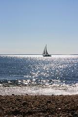 a sunny glitter (clickiloz) Tags: sea sun beach glitter sailboat boat sailing peace stones longisland sparkle pepples