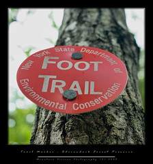 DEC Trail Marker...Noonmark Mountain (Mountain Visions) Tags: red ny pentax c adirondacks dec blaze 2008 sept adk trailmarker aficionados foottrail k10d mountainvisions pentaxsmcpda35mmf28