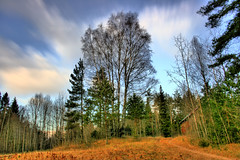 HDR landscape (hornblower441 (k. m. slenes)) Tags: autumn tree skies outdoor picturesque soe hdr breathtaking otw oppegrd anawesomeshot theunforgettablepictures goldstaraward rubyphotographer breathtakinggoldaward hvitebjrn